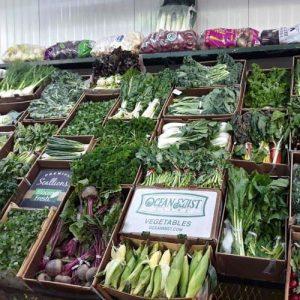 WHOLESALE-food-supply nyc